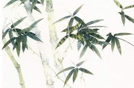 潇湘神·斑竹枝